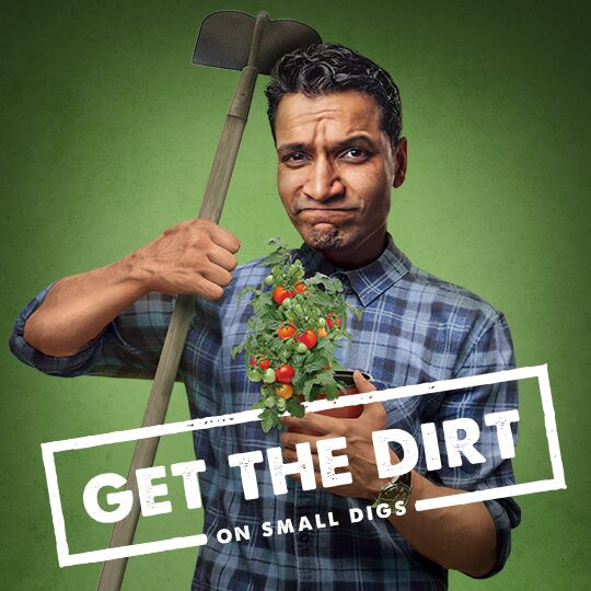 get the dirt on small digs ad